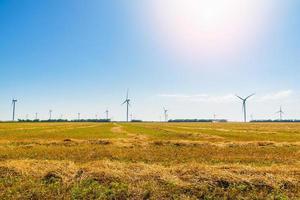 Wheat field and eco power, wind turbines