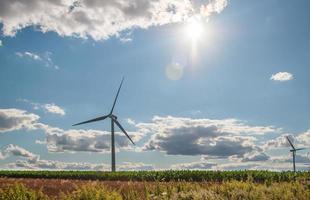 Wind turbines in the fields