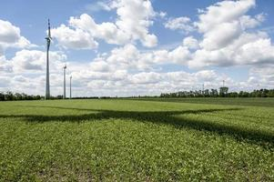 Wind power field on summer day with rotor shadow