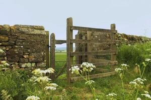 Kissing gate. photo