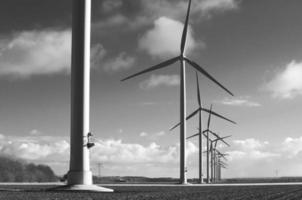 wind turbines farm photo