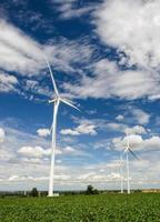 Wind turbines produce electricity Alternative energy with sky and cloud photo