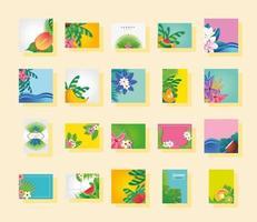 conjunto de plantillas de verano y flores.