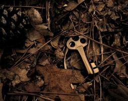 Skeleton key surrounded by dry leaves