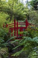 Red walking bridge with ferns, stream, and forest