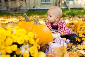Baby boy in red shirt sitting among pumpkins photo
