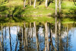 reflexos cênicos de árvores e nuvens na água