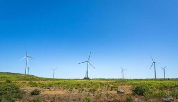 Windmills in the valley photo