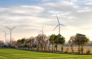molinos de viento foto