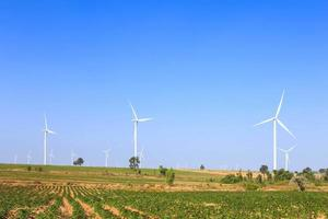 Group of wind turbine power generator photo