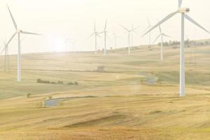 Wind turbines in a field photo
