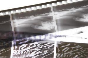 primo piano della striscia di pellicola