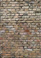 pared de ladrillo foto