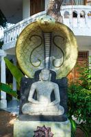 Sri Lanka photo