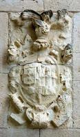 conjunto de armadura de piedra