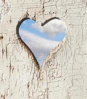Heart shape look out on wooden door to outhouse. photo