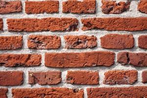 vista detallada de una pared de ladrillos foto