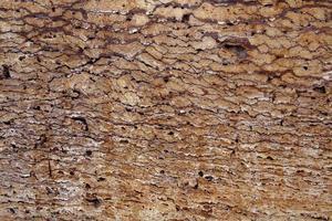 Texture de dalle de pierre de granit