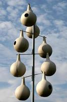 hogar para los pájaros
