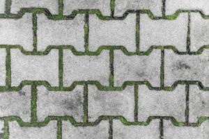 Street tiles with moss