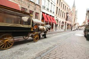 Carriage Ride photo