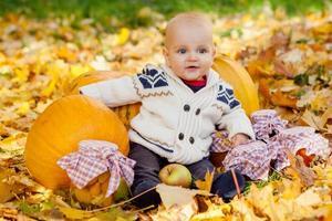 Enfant en pull tricoté se trouve parmi les citrouilles en automne park