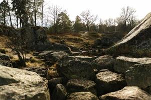 rotsachtige heuvels en bomen