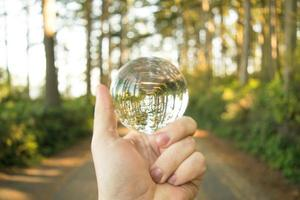 Person holding lensball in park photo