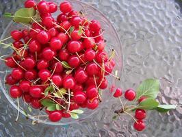 Cherries on glass