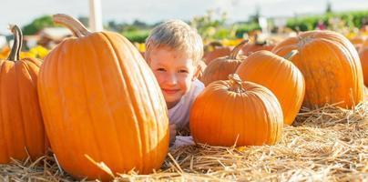 kid at pumpkin patch photo