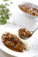 Beef curry photo