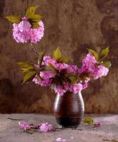 sakura en un florero