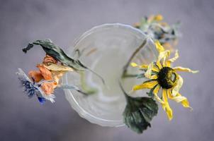 flores mortas secas em vaso de vidro