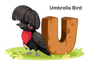U for Umbrella bird