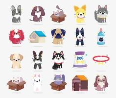 Full pet animals collection vector