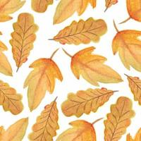 Watercolor fall autumn leaf seamless pattern vector