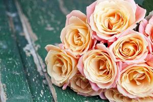 Beautiful roses photo