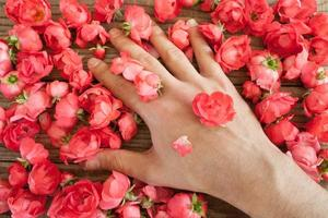 hand among red roses on a wooden table