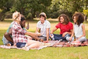 amigos felices en el parque haciendo picnic