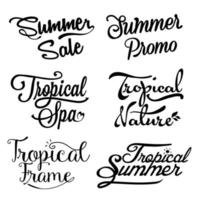 Summer sale and tropical lettering vector
