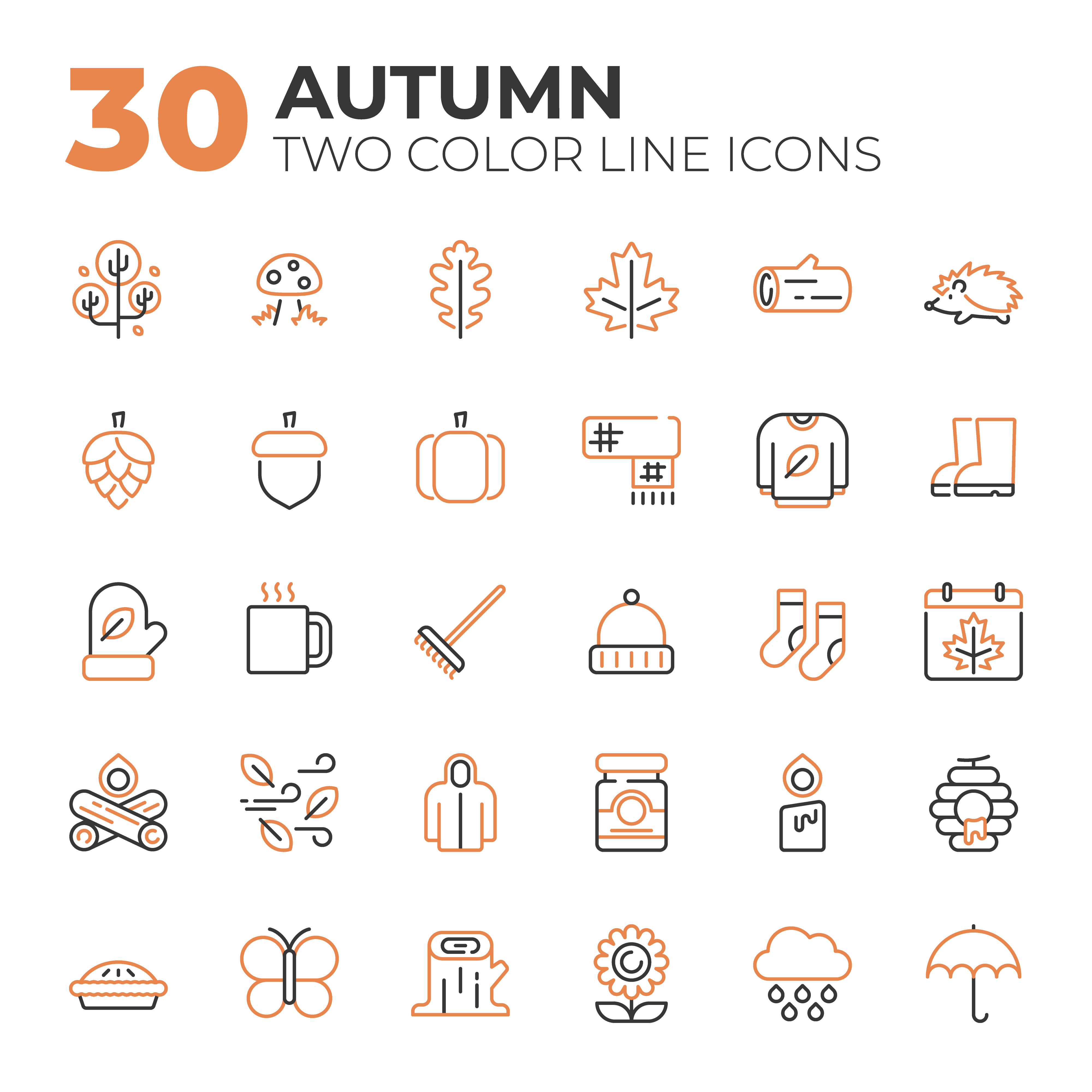 Set of Autumn related icons