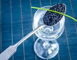 Black caviar photo