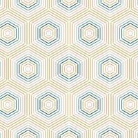 Geometric Colorful Line Hexagon Seamless Pattern vector
