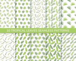Set of tropical leaves seamless pattern vector
