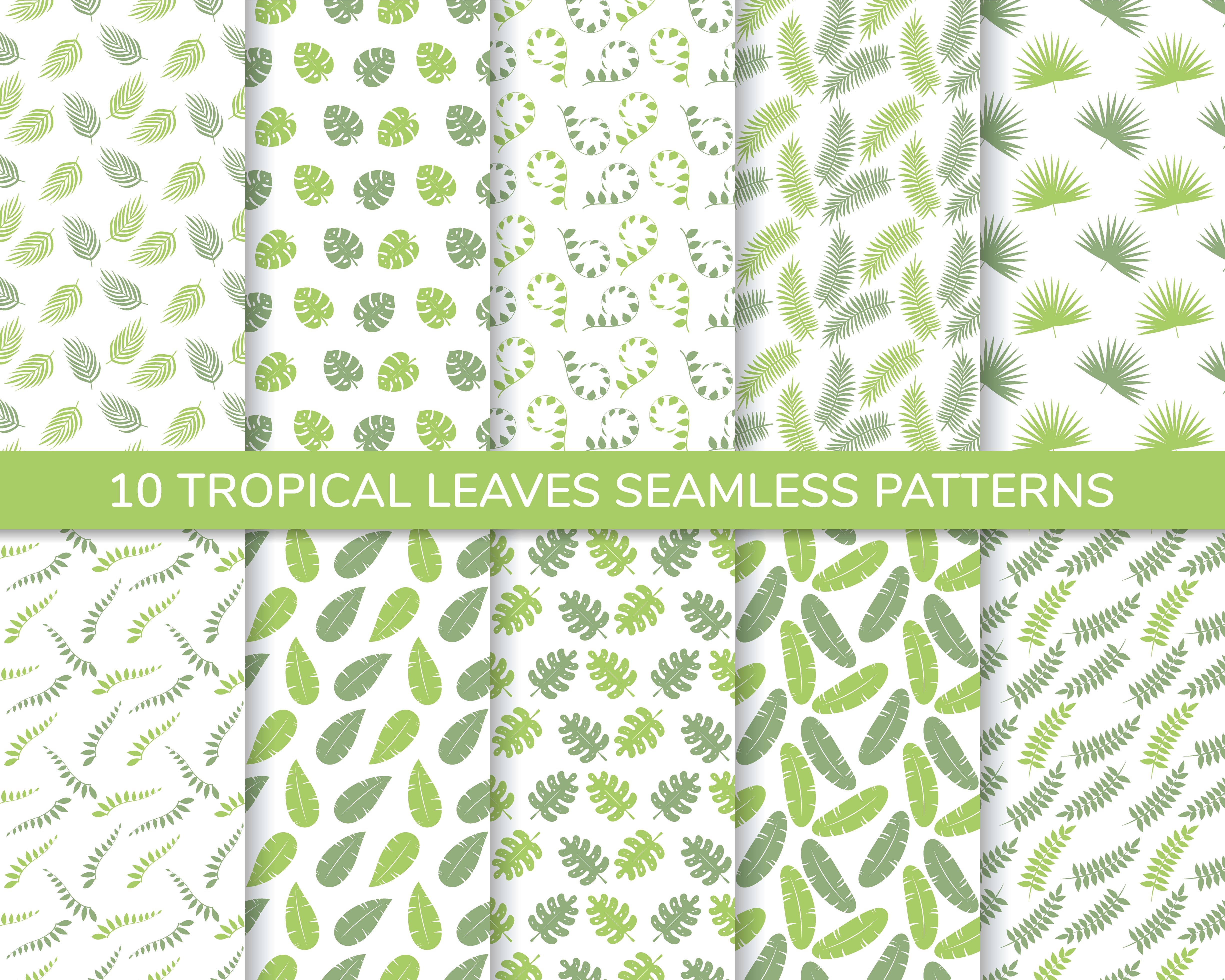 conjunto de hojas tropicales de patrones sin fisuras