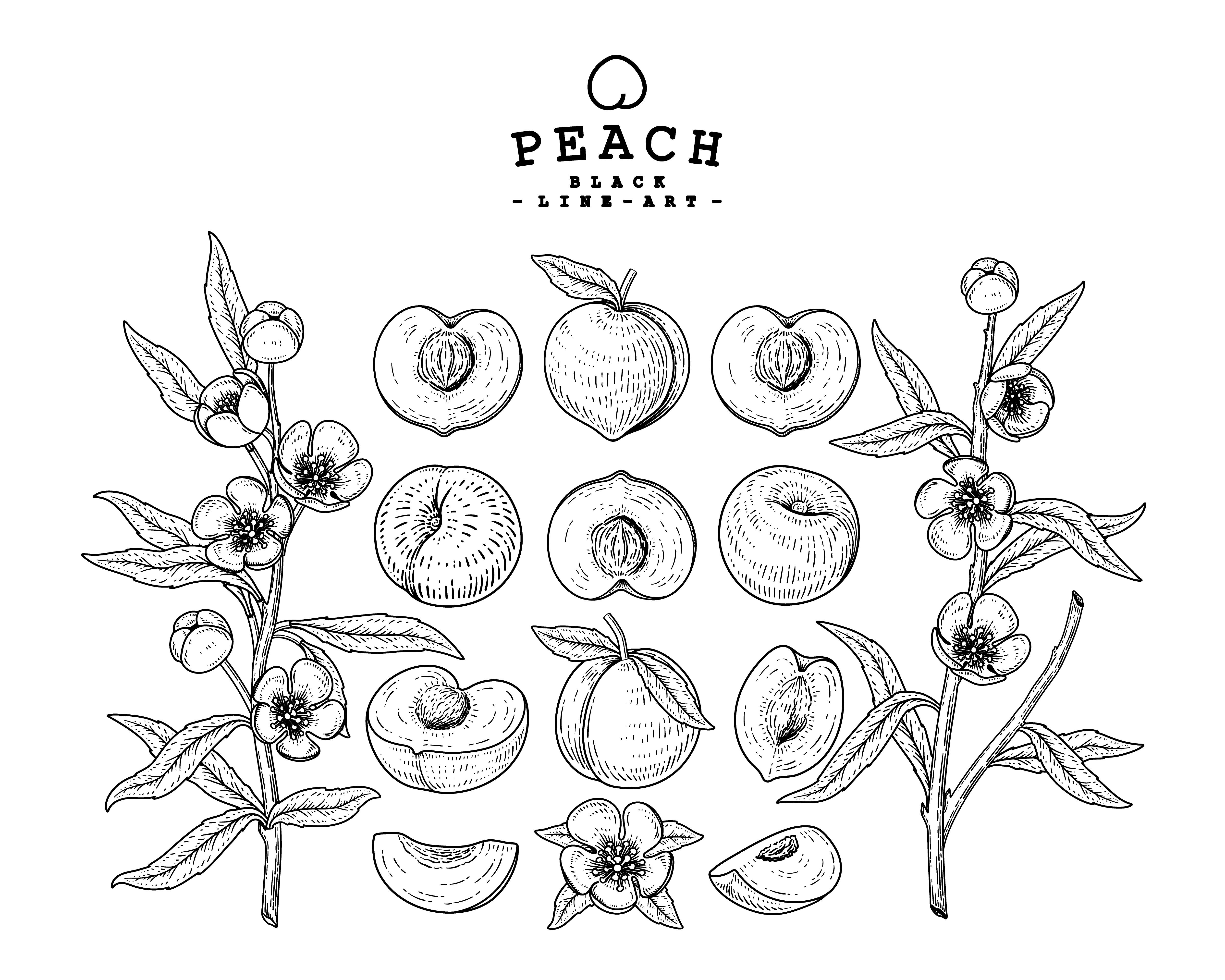 Peach decorative set