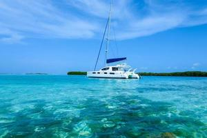 Catamaran anchored near tropical island in the caribbean