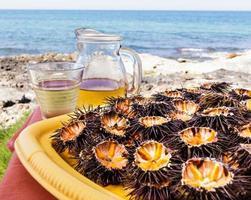 Sea urchins (ricci di mare) and wine photo