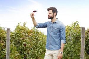 Working at vineyard
