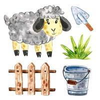 Sheep, cattle wooden fence, grass, bucket, shovel.
